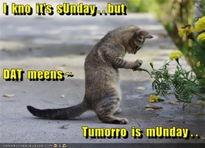 I  kno  it's  sUnday . . but  DAT  meens ~  Tumorro  is  mUnday . .