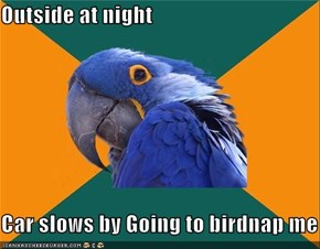 Outside at night  Car slows by Going to birdnap me