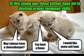 At this young age, these kittens have yet to develop proper language skills.