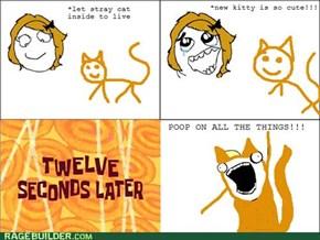 Kitty poop!