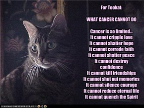 For Tookat:WHAT CANCER CANNOT DOCancer is so limited...It cannot cripple loveIt cannot shatter hopeIt cannot corrode faithIt cannot shatter peaceIt cannot destroy confidenceIt cannot kill friendshipsIt cannot shut out memoriesIt cannot silence