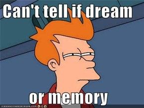 Can't tell if dream  or memory