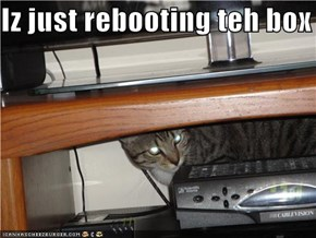 Iz just rebooting teh box