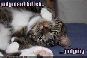 judgment kitteh..  ....judging