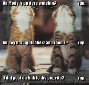 Da Mods iz up dere watchin?                        Yup. An dey haz lightsaberz an broomz?           Yup. U did post da link to dis pic, rite?               Yup.