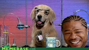 Yo dawg... I Heard You Like Labs