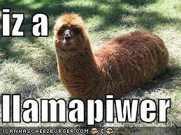 iz a  llamapiwer
