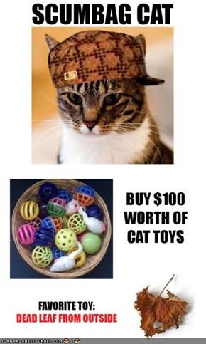 MemeCats: Scumbag Kitteh