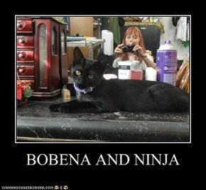 BOBENA AND NINJA