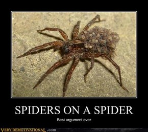SPIDERS ON A SPIDER