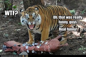 Ted didn't know what was worse, wearing his glasses or being teased by the other tigers...