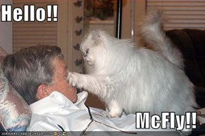 Hello!!  McFly!!