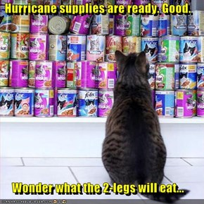 Hurricane supplies are ready. Good.   Wonder what the 2-legs will eat...