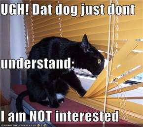 UGH! Dat dog just dont understand; I am NOT interested