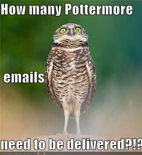 How many Pottermore  emails need to be delivered?!?
