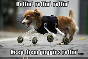 Rollin', rollin', rollin'  Keep them goggies rollin'.....