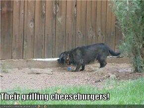Their grilling cheeseburgers!