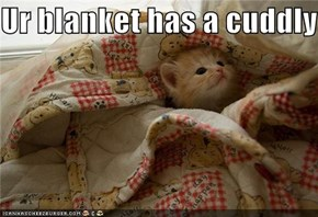 Ur blanket has a cuddly