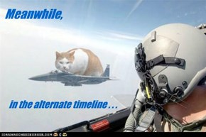 Silly pilot! Portals are for kittehs!!