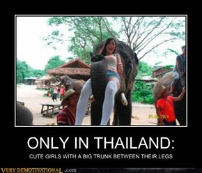 ONLY IN THAILAND: