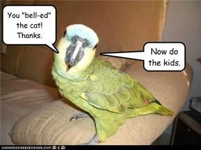 Smoothing ruffled feathers
