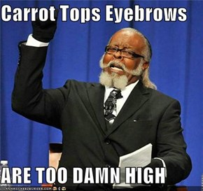 Carrot Tops Eyebrows  ARE TOO DAMN HIGH