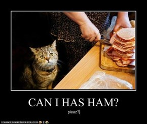 CAN I HAS HAM?