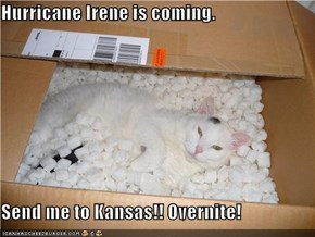 Hurricane Irene is coming.  Send me to Kansas!! Overnite!