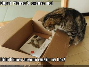 Oops!  Please to excuse me!  Didn't know anyone wuz in my box!