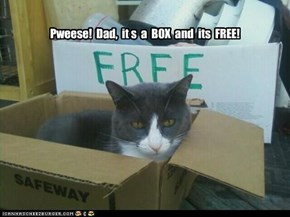 Pweese!  Dad,  it s  a  BOX  and  its  FREE!