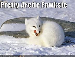 Pretty Arctic Fawksie