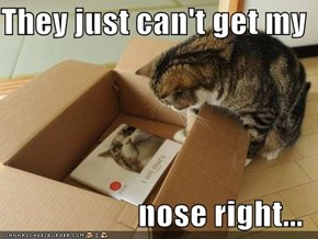 They just can't get my  nose right...