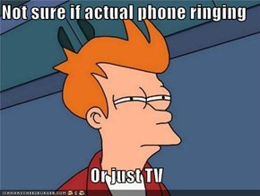 Not sure if actual phone ringing  Or just TV