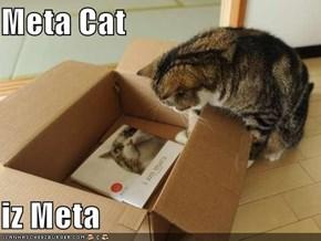 Meta Cat  iz Meta