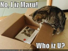 No, I iz Maru!  Who iz U?