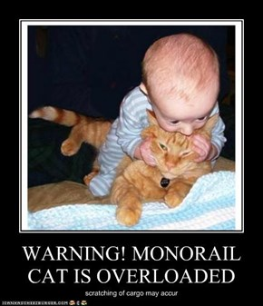 WARNING! MONORAIL CAT IS OVERLOADED
