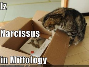 Iz Narcissus in Miffology