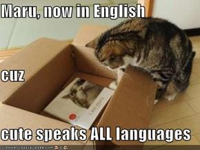 Maru, now in English cuz cute speaks ALL languages