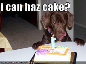 i can haz cake?
