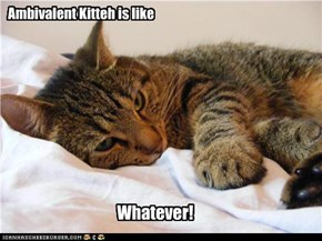 Ambivalent Kitteh is like
