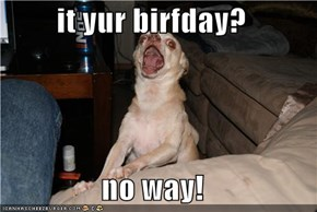 it yur birfday?  no way!