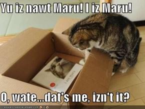 Yu iz nawt Maru! I iz Maru!  O, wate...dat's me, izn't it?