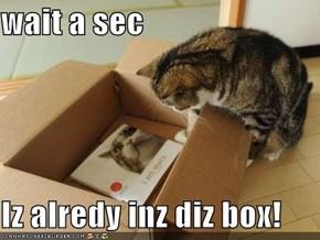 wait a sec  Iz alredy inz diz box!