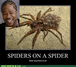 You leik spiders?