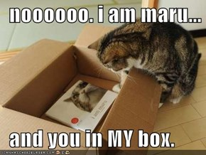 noooooo. i am maru...    and you in MY box.