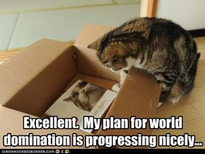 Excellent.  My plan for world domination is progressing nicely...