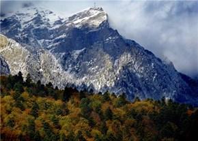 Mountains by Train in Bustenii, Prahova, Romania