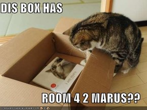 DIS BOX HAS  ROOM 4 2 MARUS??