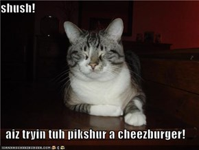 shush!  aiz tryin tuh pikshur a cheezburger!