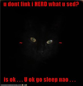 u dont fink i HERD what u sed?  ~                               ~ is ok . . . U ok go sleep nao . . .